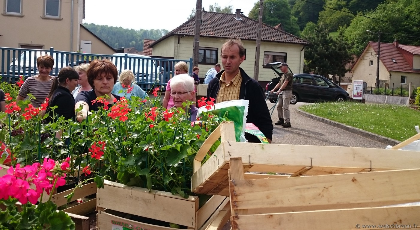 De nouvelles fleurs pour embellir le village actualit s for Plantation de fleurs